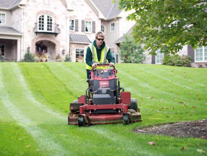 Lawn Cutting Website Image